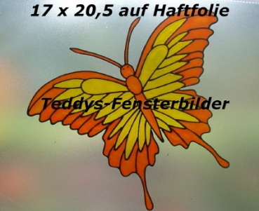 Schmetterling in orange gelb